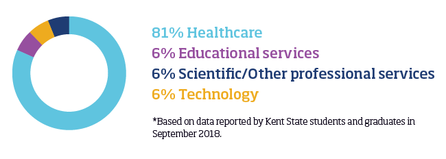 Pie chart displaying breakdown of professional fields for online master's in HI students: 81% healthcare, 6% educational services, 6% scientific/other professional services, 6% technology