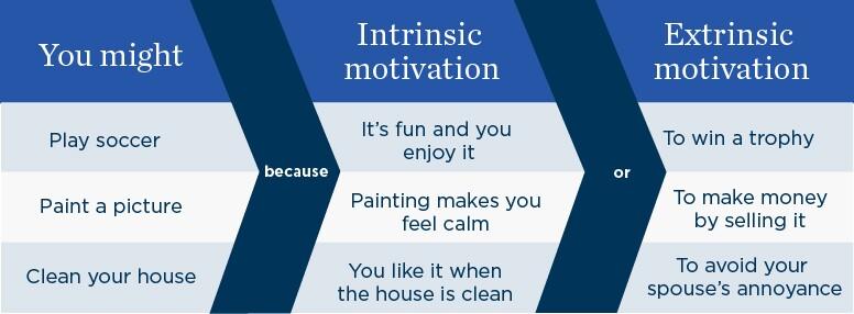 Intrinsic motivation chart
