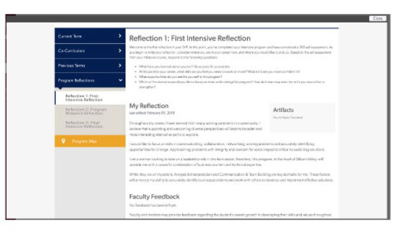 Example of Reflection in SVP Dashboard