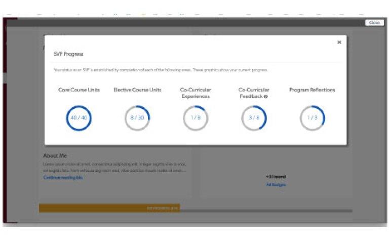 View of Progress in SVP Dashboard