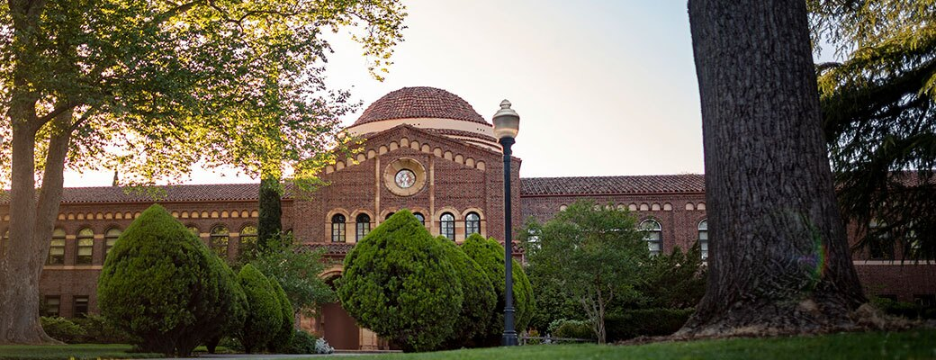 View of Chico State campus lawn with cone-shaped pine trees and brick building with rotunda in background